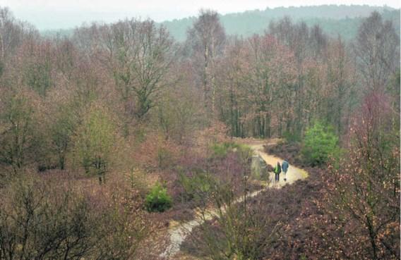 Het nationaal park Hoge Kempen creëerde ongeveer vierhonderd banen, de jaarlijkse inkomsten voor de naburige horeca en handel worden op 20miljoen euro geraamd.Eric de Mildt