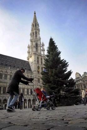Torenhoge boom brengt kerstsfeer naar Brussel