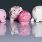 Kunnen 55-plussers 1.230 euro storten voor pensioensparen?