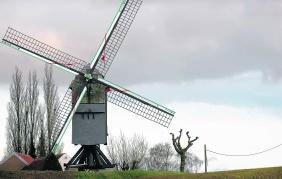 Windmolen in Onze-Lieve-Vrouw-Lombeek.ip