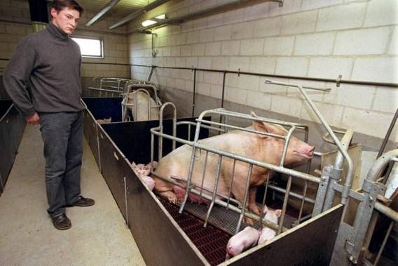 Colruyt steekt varkensboeren handje toe