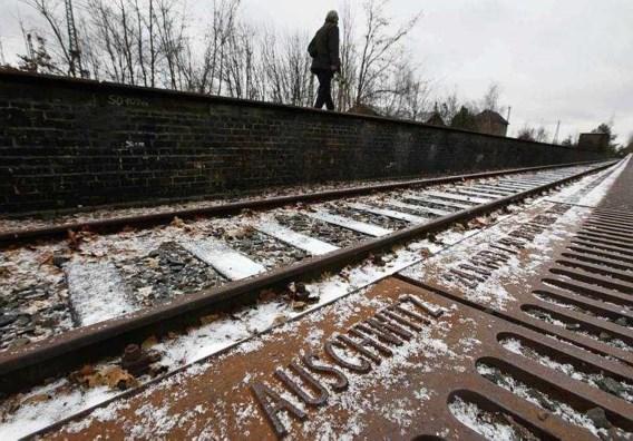 Polen wil dat nazikampen .pl wijzigen in .eu
