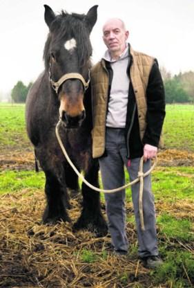 Johnny De Mot met een paard dat zijn parochianen hem hebben geschonken.'mh