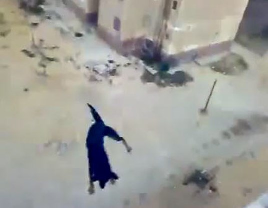 VIDEO. Man gooit hond van dak