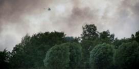 Limburg sluit bossen voor publiek