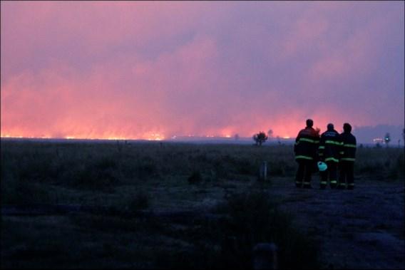 Groot bosbrandgevaar vlakbij Belgische grens