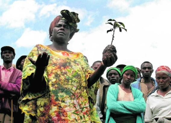 Maathai trekt veel volk tijdens een boomplantactie in het Aberdare National Park in 2004. Evelyn Hockstein/pn