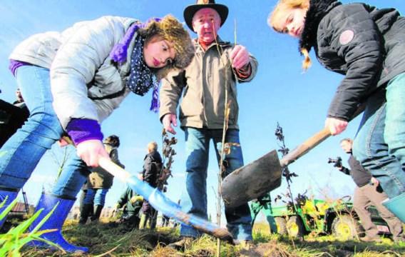 De kinderen van de basisschool Niel-bij-As hebben hun bijdrage geleverd door boompjes te planten. ppn