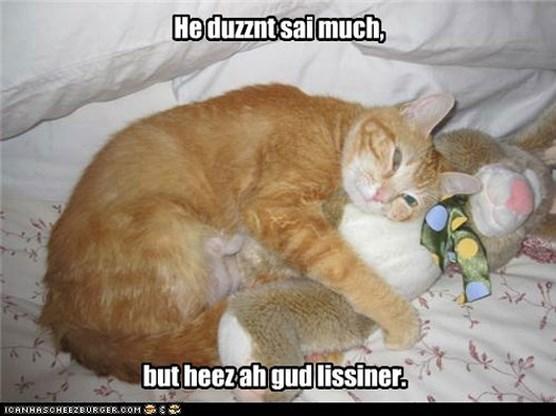 I Can Has Cheezburger: kattenfoto's op je iPhone