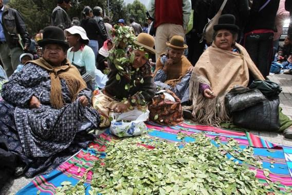 Boliviaanse rechter 'consulteert' cocabladeren