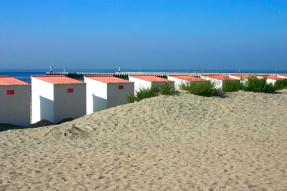 Ontdek de Belgische kust met 'greeters'