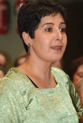 Dienst Vreemdelingenzaken: 'Repatriëring zou ook afgelast zijn zonder Saïdi'