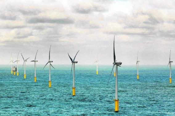 De financiering van windmolenparken op zee wordt steeds moeilijker. Foto: de 55turbines van Belwind die 175.000 gezinnen van energie voorzien.Nicolas Maeterlinck/photo news