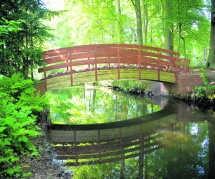'The bridge with no name' van Ai Weiwei.<br>Katrijn Van Giel