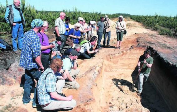 Archeologen bestuderen de bodem in Maatheide die overblijfselen uit de Steentijd herbergt. kvh