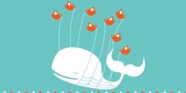 Wereldwijde storing legt Twitter plat