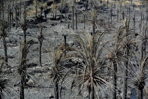 Natuurbranden La Gomera nog steeds niet geblust