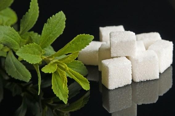 Stevia, de zoete belegging