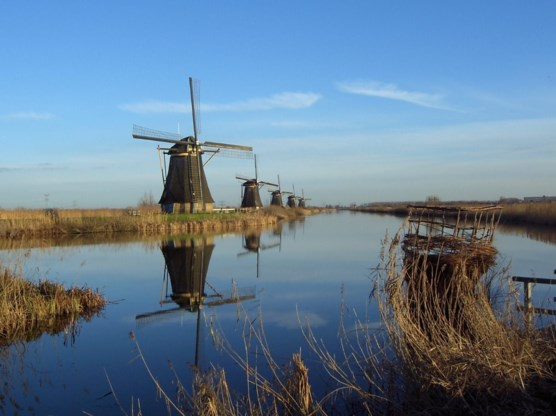 Nederlanders begrijpen deze Vlaamse tekst niet