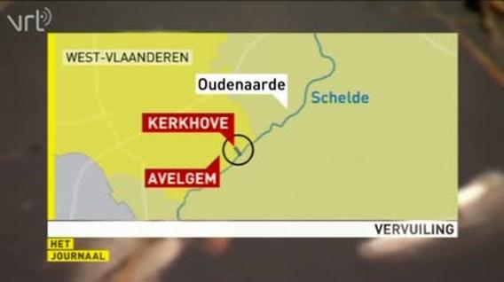Vervuiling Schelde : Tot 10 ton dode vis