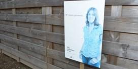 CD&V-campagne lijdt aan Smurfenblauwte