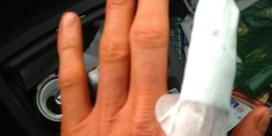 Bart Wellens ondanks jaap in vinger klaar voor WK