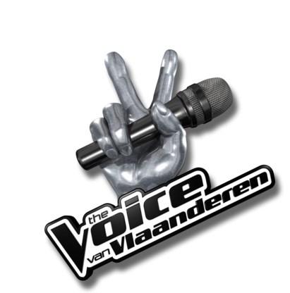 The Voice van Vlaanderen; vanaf vrijdag 25 november bij vtm.