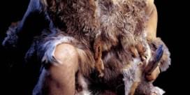 De Neanderthal-obediEntie