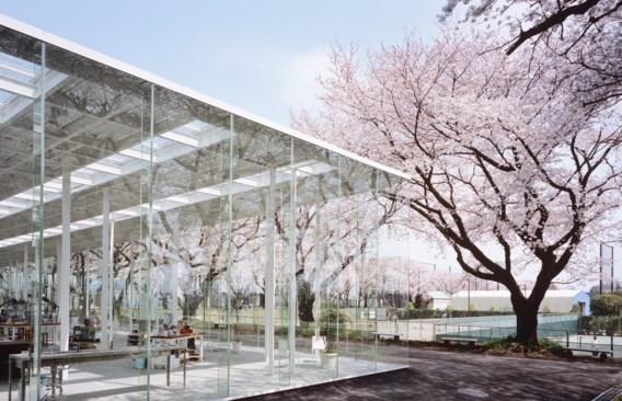 Het Kait in Tokio, volledig opgebouwd in glas zonder ook maar één muur, lijkt pas te eindigen aan de omringende kerselaars.