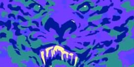 VIDEO. De Kenzo-tijger is nog niet uitgebruld