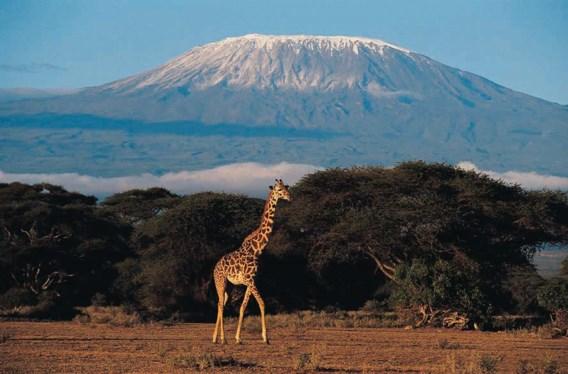 Kenia - Een berg als geschenk