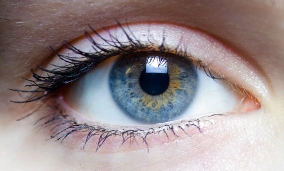 Ook de zon op foto doet pupillen verkleinen