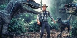 DE ZOMER VAN 1993: De ontdekking van de hemel met dino's