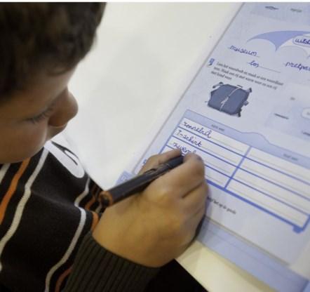 Nederlands leren  op z'n klein-Vlaams