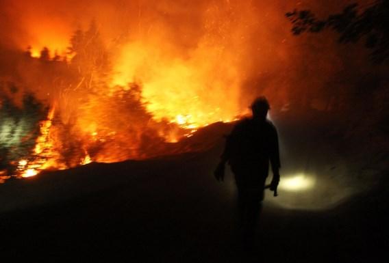 Bosbrand nabij Yosemite nationaal park was op twee na grootste in geschiedenis Californië