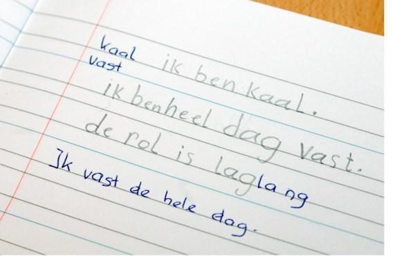 De nood aan taallessen in Brussel neemt almaar toe.