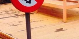 Skaters niet welkom rond Vlaams Parlement