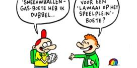 Het jaar 2013 in 13 cartoons van Lectrr