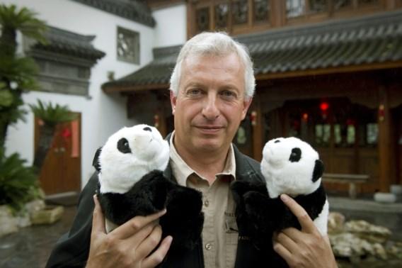 Panda's komen binnen twee maanden aan in België