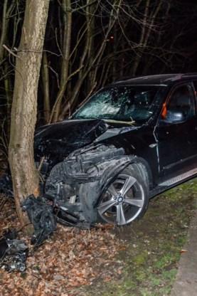 De andere auto botste tegen een boom.