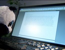 Video: panda's achter pc voor De Wever