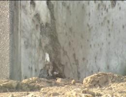 Ontploffing obus in Ieper: 2 doden