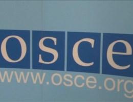 Oekraïne: OVSE stuurt waarnemers