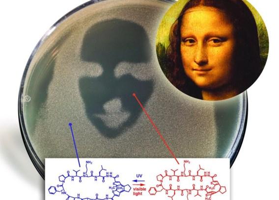 In het schaaltje prijkt 'Mona Lisa' in negatief.