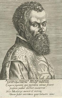 Andreas Vesalius.