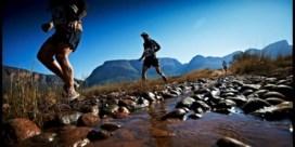 Deze vijf marathons zijn het reizen waard