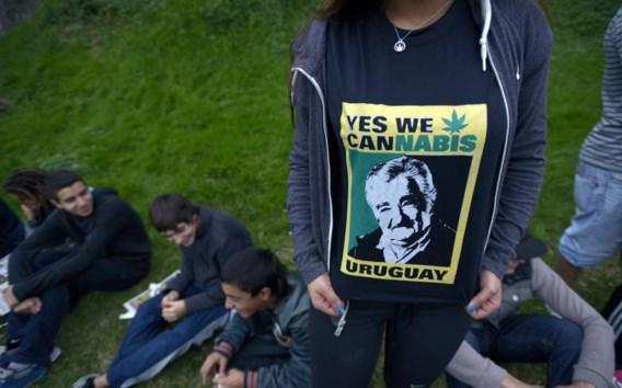 Uruguay gaat met zijn wietwet veel verder dan Nederland met zijn gedoogbeleid.