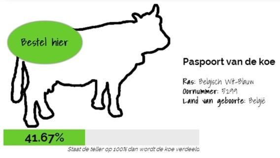 Op de website Deel een koe worden vleespakketten verkocht.