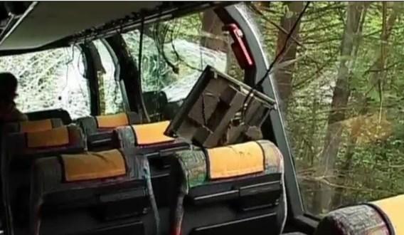 De bomen verhinderden dat de bus nog dieper belandde.