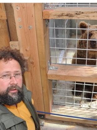 Karel Ackaert staat in voor de verzorging van de beren.